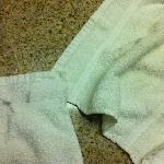 DISGUSTING TOWEL