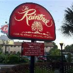 Foto di Raintree Restaurant