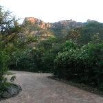 Ngotshe behind Ntshondwe Lodge