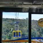 Scenic Skyway cable car
