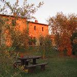 il giardino interno con ulivi (la porta finestra che si vede è l'ingresso dell'appartamento Amat
