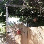 private entrance for the Secret Garden Room