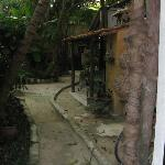 Kinsol Path