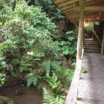 pretty garden and waterway running next to the main walkway