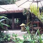 restaurante cercado pela natureza, pássaros, flores, ambiente muito bom.