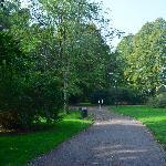 Kungsparken