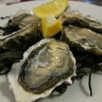 Lovely Oysters for dinner