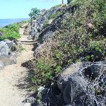 This is atrail that leads to another Kamole beach. There are a total of three.