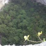 Photo of Posada Rural Finca Chacula