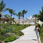 Gardens & path to beach