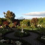 View of Mt Taranaki from garden