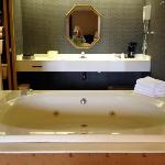 Huge bathtub - this is the view from our bed