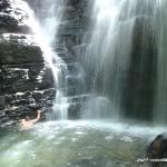 jungle hike brings you to this waterfall after a very educational hike..