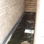 Apartment 9F - rubbish on wraparound balcony area