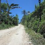 Treacherous, steep dirt road leading to hotel entrance; ~100 meters long