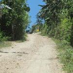 Treacherous, steep dirt road leading to hotel entrance; ~100 meters long; hope it doesn't rain;