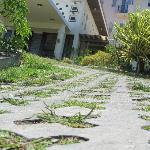 Treacherous steep driveway leading to lobby;  hollow paving stones will twist ankles;