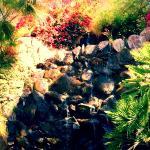 Tranquil breakfast waterfall view