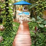 El Jardín con muchas plantas exóticas