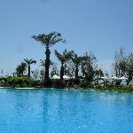 view drom pool
