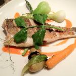sea bass entree