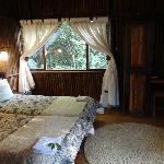 chambre coquette dans les arbres
