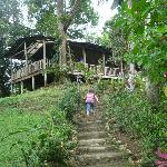 La cabane familiale sur la colline
