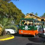 A stopping place for sightseeing trolley tours