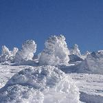 Zao Bodaira Highlands