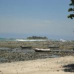 Low Tide Cemetery Island