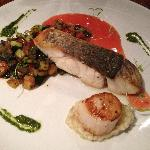 Local barramundi with ratatouille, basil pesto and seared scallop