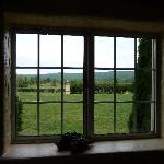 Looking out at a Tuscan setting
