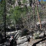Heading to the Heart of The Rocks | Chiricahua National Monument
