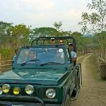 Safari vehicle, guide and driver