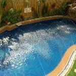 the delightful pool