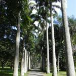 Foto di Jardín Botánico