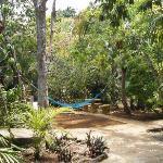 Auf zweieinhalb Hektar: landestypischer Garten