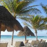spiaggia di sabbia bianchissima con palme e ombrelloni