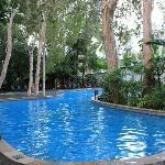 Mercure Rockford Esplanade pool - a highlight