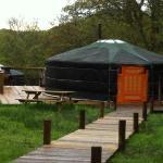 Yurts like a Tardis!