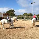horse riding lessons free for kids