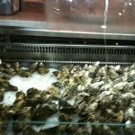 seafood bar 2