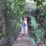El puente hamaca sobre un riachuelo.