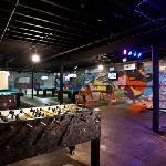 Taco Abajo game room