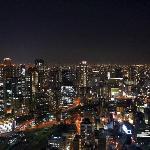 Osaka from Sky garden view