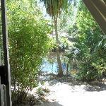 Nice pond outside of room