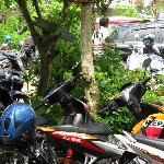 Rock n Reef car park