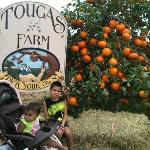 Tougas Farm
