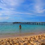 Photo de Derawan Dive Lodge