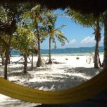 View from the kitchen, in front of my favorite yellow hammock!